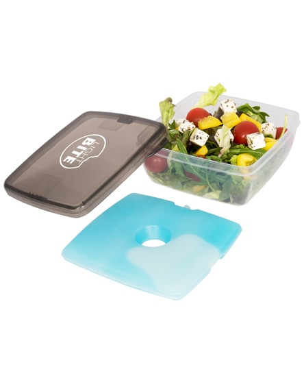 branded glace lunch box with ice pad